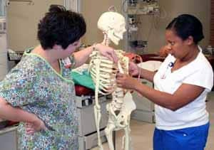 Heather Neal-Rice, an assistant professor in the UAMS respiratory care program, quizzes a student on stethoscope placement for listening to specific sections of the lungs.