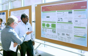 From left, Peter Crooks, Ph.D., D.Sc., and Narsimha Penthala, Ph.D., discuss their research on small-molecule derivatives as anti-cancer agents.