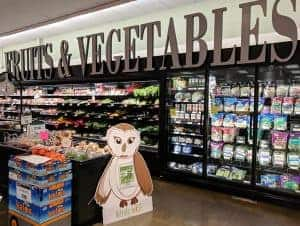 Windy the owl cardboard cutout in grocery store