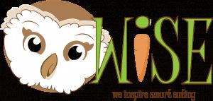 Windy Wise logo