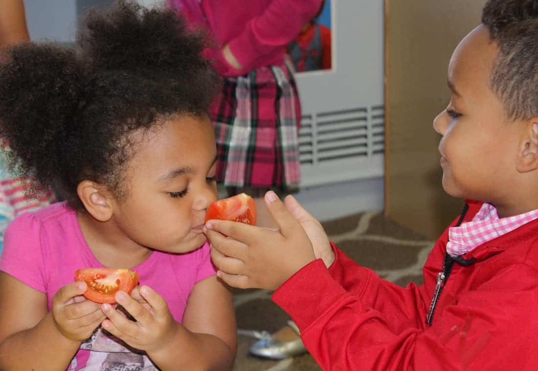 Children smelling tomato