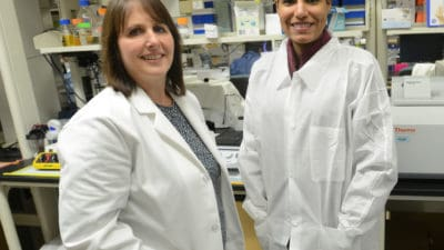 Karen Abbott, Ph.D., assistant professor in the UAMS College of Medicine's Department of Biochemistry and Molecular Biology, and Analiz Rodriguez, M.D., Ph.D., assistant professor in the UAMS College of Medicine's Department of Neurosurgery, have received a $604,208 NIH grant to study an abnormal protein found in ovarian cancer and some brain tumors.