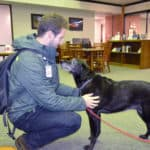 Molly the therapy dog is part of the Special Pets Offering Therapy (SPOT) program. She, and others dogs in the program, spent time in the Library during November and December to provide stress release for students and employees.