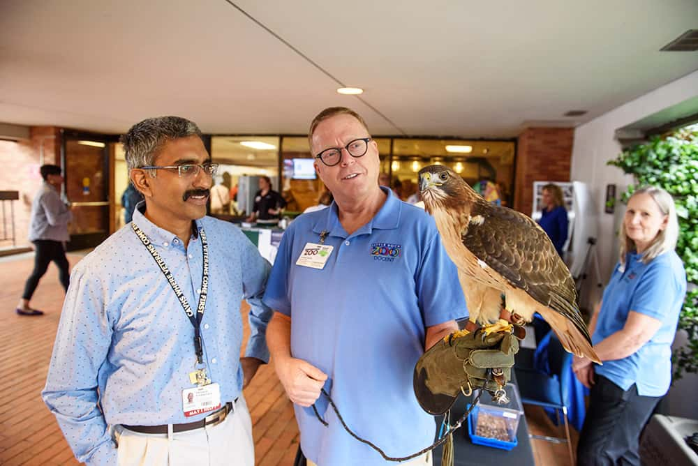 A Little Rock Zoo interpreter shows off a hawk at the UAMS celebration of Earth Day.