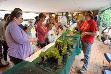 Tree seedlings and flowers were among the giveaways during the Earth Day celebration.