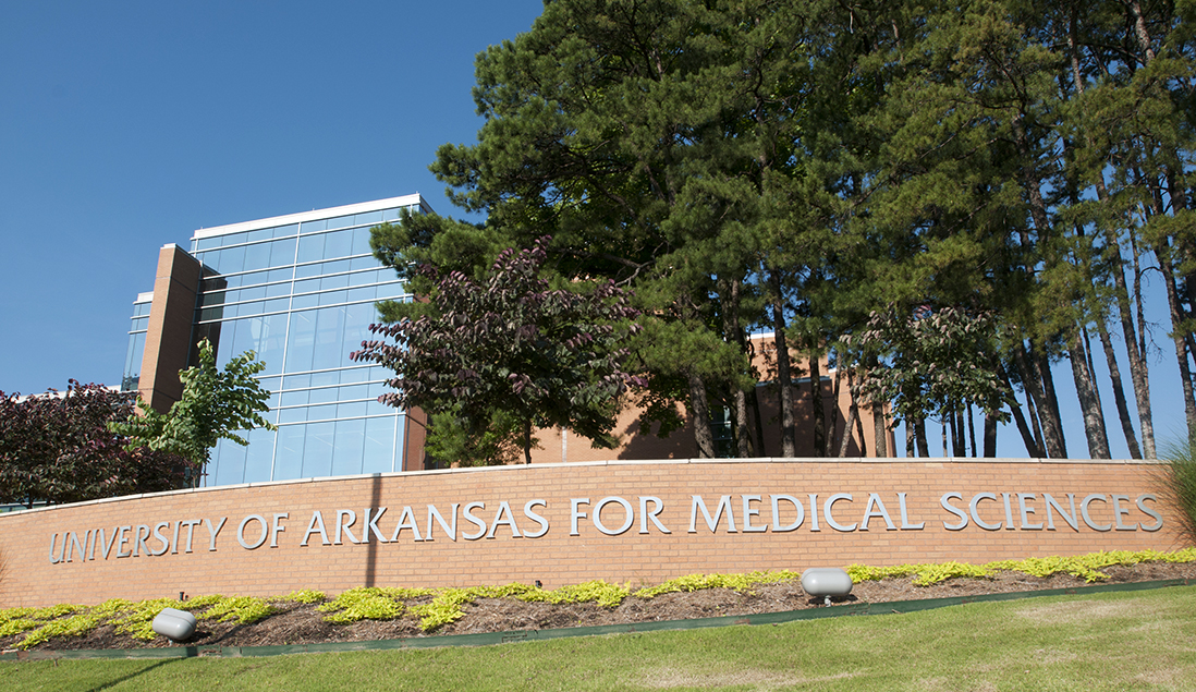 A variety of trees stand near one of the gateway entrances to the UAMS campus, recently recognized for the seventh consecutive year as a Tree Campus USA.