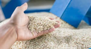 UAMS purchases rice products from Riceland Foods in Stuttgart.