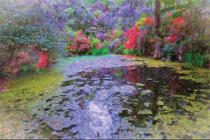 """""""The Pond"""" by Linda Harding"""
