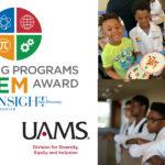 DDEI Insight Awards