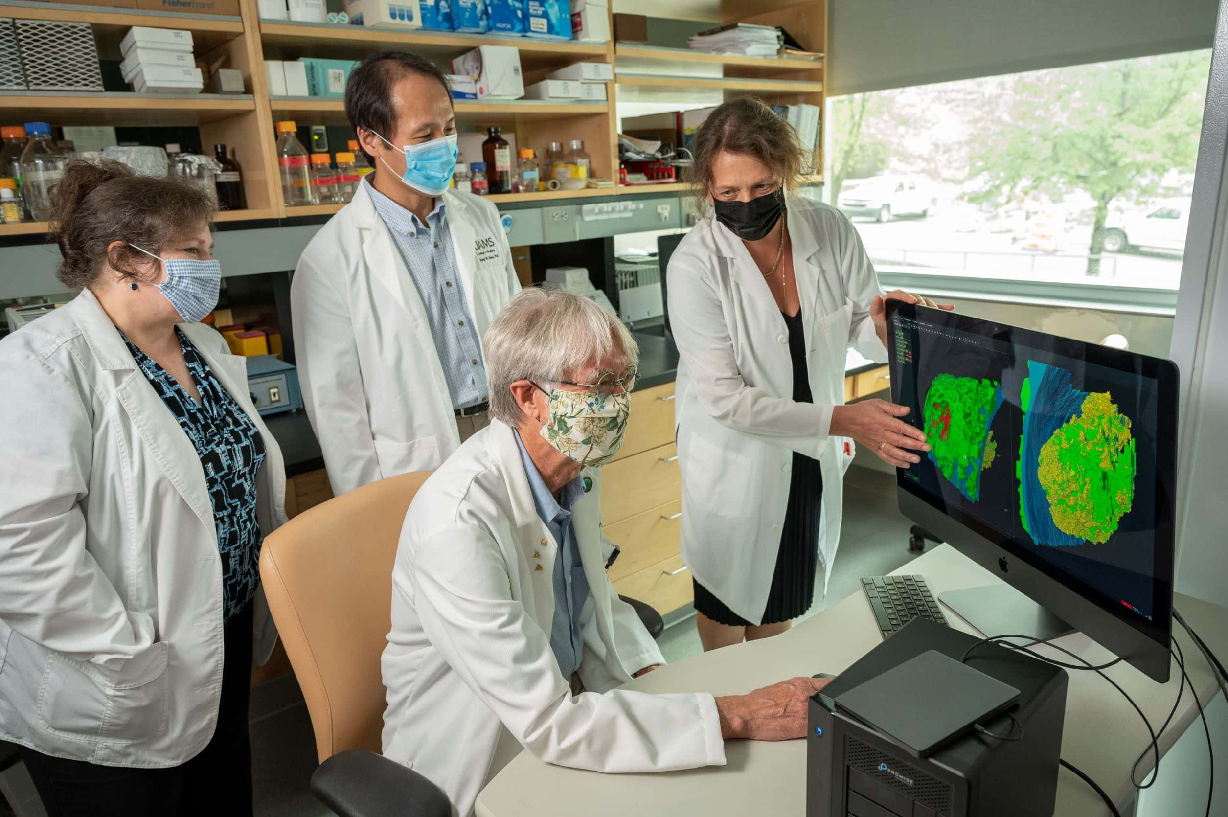 Brian Storrie, Ph.D., with members of the research team (standing, l-r), Kelly Ball, M.S., Sung Rhee, Ph.D., and Irina Pokrovskaya, M.S., displaying images of blood platelets that have combined to seal a puncture wound.